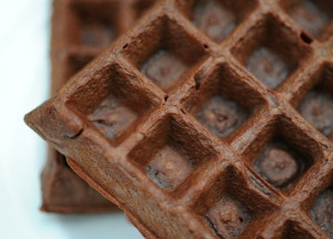 Chocolate Protein Waffle